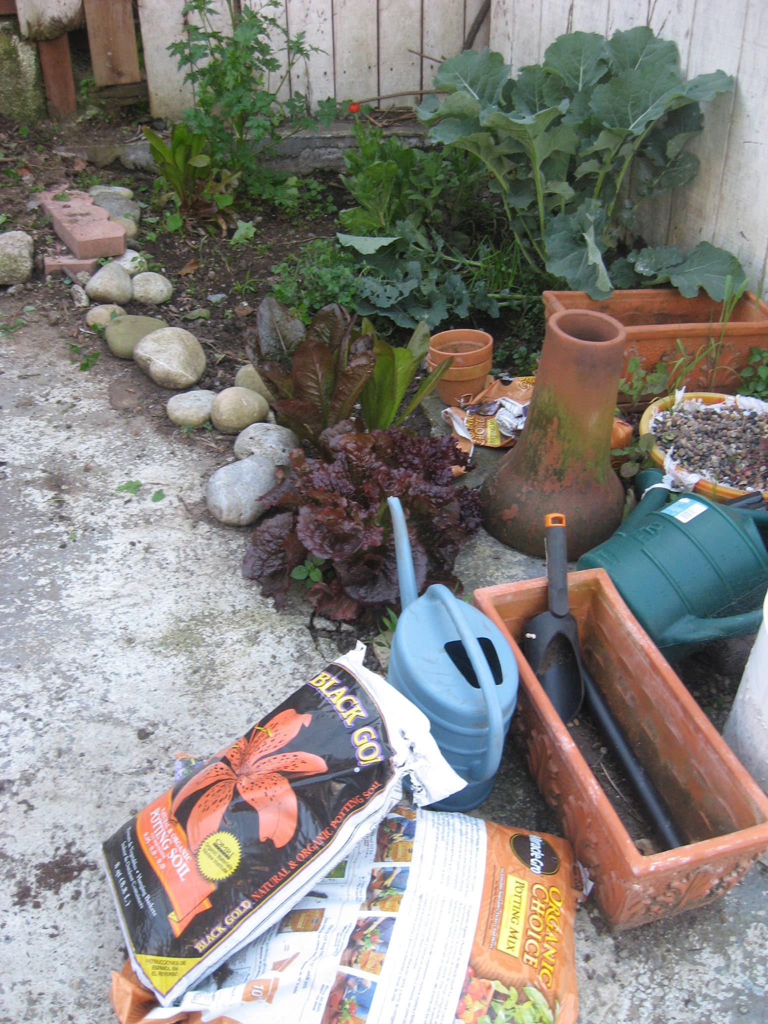 Garden space kicking off